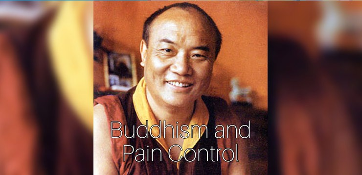 Buddhism and Pain Control