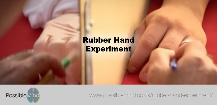 Rubber Hand Experiment
